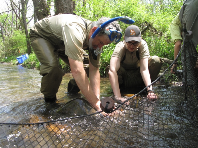 Photo: Biologists set a fyke set to catch sicklefin redhorses. Credit: G. Peeples